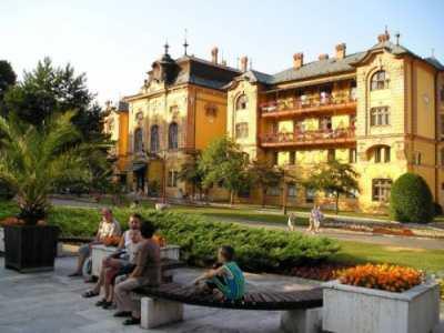 Лечение в Словакии на курорте Бардеевские Купели