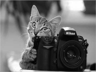 Правила путешествия фотографа (где нельзя снимать, где надо платить)